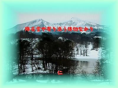 フォト575『 降る雪や寄り添う体切なかり 』zbm2201tk22