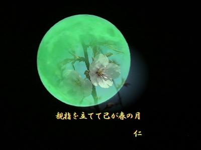 フォト575『 親指を立てて己が春の月 』zw1001sw12