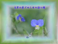 『 月草の蒼ざめし日の語り種 』物真似575秋zrr2105