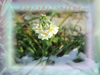 フォト575『 火もなくて恋しさつのる春の雪 』zry1202
