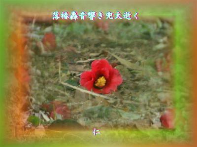 『 落椿轟音響き兜太逝く 』物真似575春zry2201