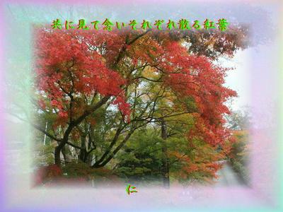 フォト575平和の砦zsm2202 共に見て念いそれぞれ散る紅葉 』