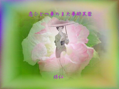 フォト575『 恋ひとつ夢のまた夢酔芙蓉 』tq0107