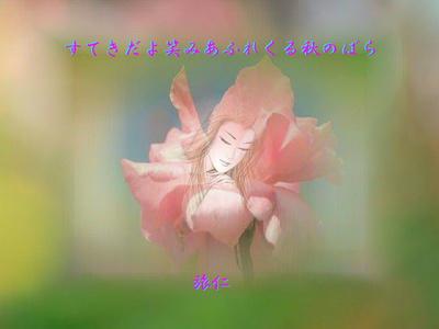 フォト575『 すてきだよ笑みあふれくる秋のばら 』tq0404