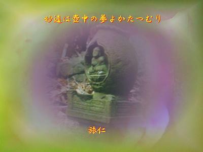 フォト575『 妙適は壺中の夢よ蝸牛 』vv3101