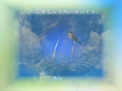 フォト575『 ただ言葉色なき風に遊ばする 』wq0601