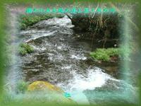 フォト平和の砦575『 個のわれを孤の道に置く冬の川 』