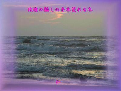 フォト575『 政権の騙しの手本荒れる冬 』zsk0407