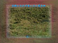『 百姓になれず老いけり荒冬田 』平和の砦575交心zsk1108