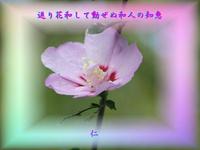『 返り花和して動ぜぬ和人の知恵 』平和の砦575交心zsk1806
