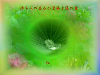 フォト575rt1001『 待ち人の在るが至福よ蓮の露 』