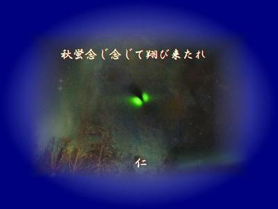 『 秋蛍念じ念じて翔び来たれ 』再録写真俳句zq0301tr16