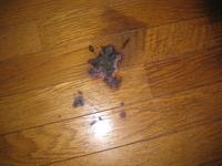 床のコゲあと・・・・