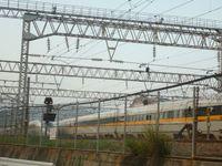 南区から秋月、美奈宜の杜まで走って50kmの旅!