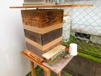 日本みつばち 手作りの女王蜂捕獲器