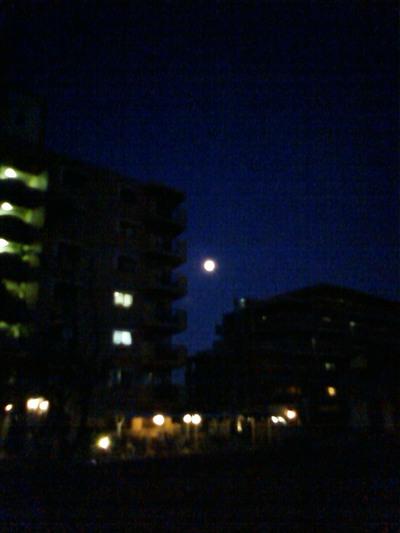 きのうの月です。