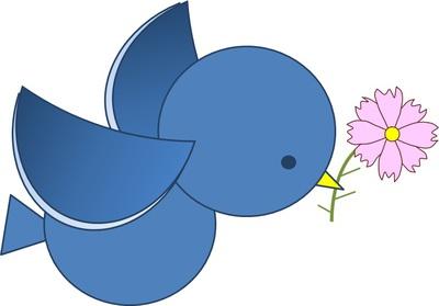 青い鳥とコスモス。