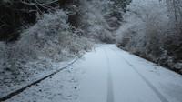雪が少し降りましたね~