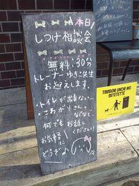 定期的にしつけ相談会を(^^)
