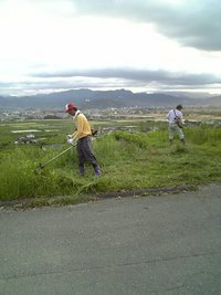 BB園草刈り