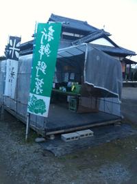 白菜100円
