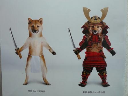 和犬男児とお立ち台の女王