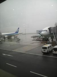 ある日の東京