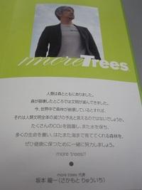坂本龍一氏代表のmore trees