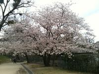 舞鶴公園♪