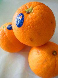 オレンジで元気に!