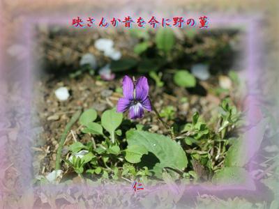 『 映さんか昔を今に野の菫 』物真似575春zrx1108