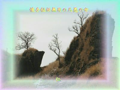 フォト575『 懐手秘伝無用の凡愚の世 』zrz1204