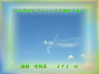 フォト575『 秋の空心にフェニックス活かしませ 』zr1302sr14