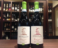 夏の新着ワイン情報③〜イタリア新作の赤ワイン
