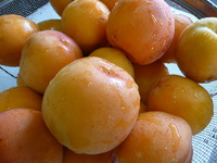 Apricot Jam作りました
