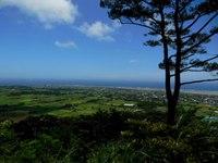 2014年度・徳之島移住体験ツアー