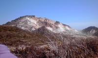 花の函館山、恵山(北海道)