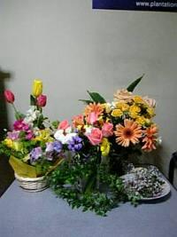 私のお部屋はお花屋さん♪