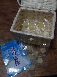 レモン+塩