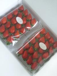 イチゴの発送について…