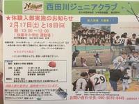 少年野球 体験入部のお知らせ
