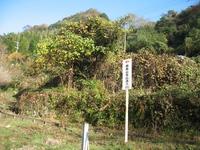 鹿嵐山(758.1m)