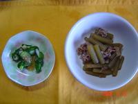 今日の春野菜料理