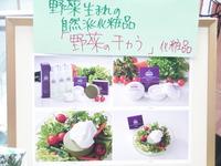 店舗取材【自然化粧品 野菜のチカラ】