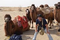 タクラマカン砂漠の旅1