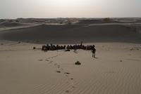 ラクダで旅するタクラマカン砂漠