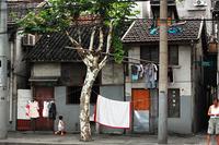 屋外洗濯物干し禁止令:上海