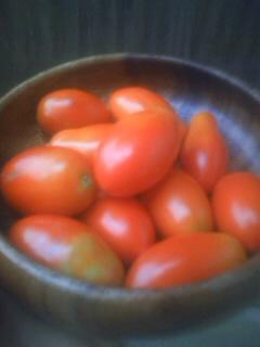 マウロの地中海トマト